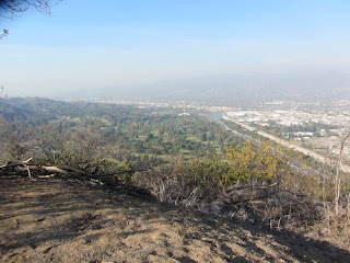 View north from Beacon Hill, Griffith Park