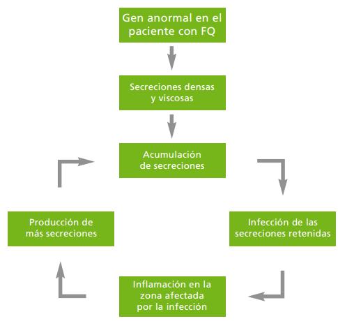 PULMONAR FIBROSIS QUISTICA PDF