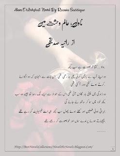 Alam E Wehshat by Raania Saddique Rude And Cruel Hero Novel | Urdu