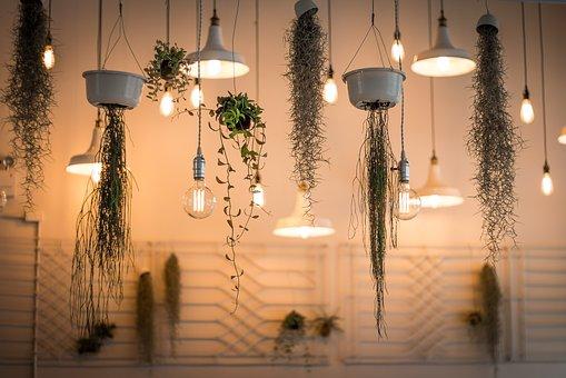 Oświetlenie W Uprawie Roślin Czy To Możliwe Blog W