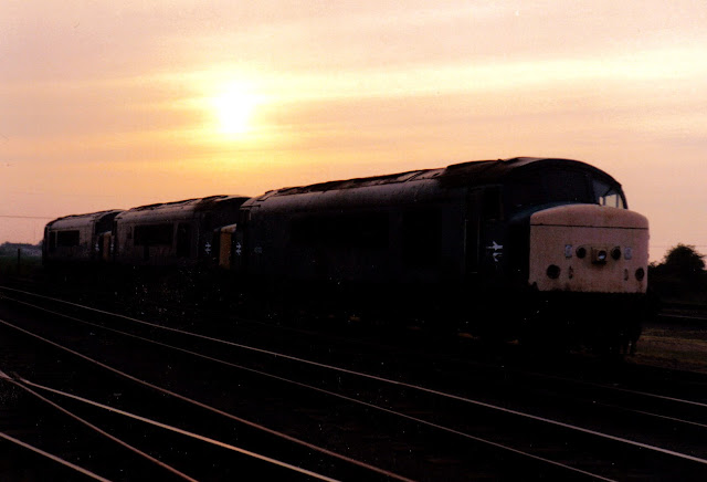 Evening photo of three Class 45 'Peak' diesel locomotives on Whitemoor Yard sidings in the 1980's awaiting disposal