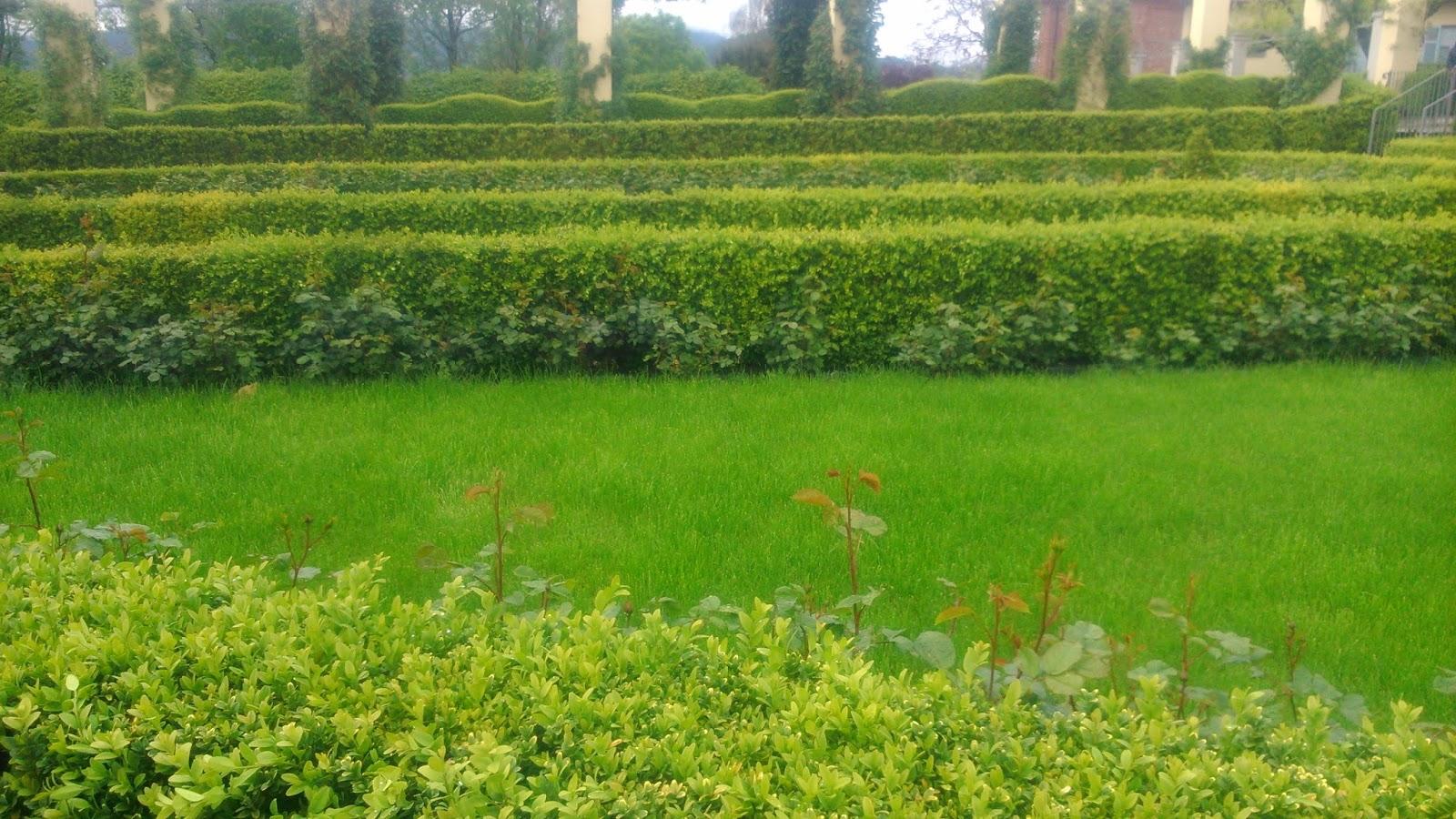 Pettinengonline henri cartier bresson e i giardini di palazzo gromo losa - I giardini di palazzo rucellai ...
