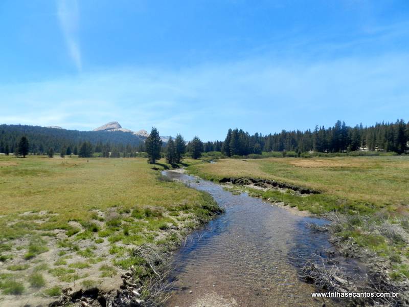 Yosemite Tuolomne Meadows