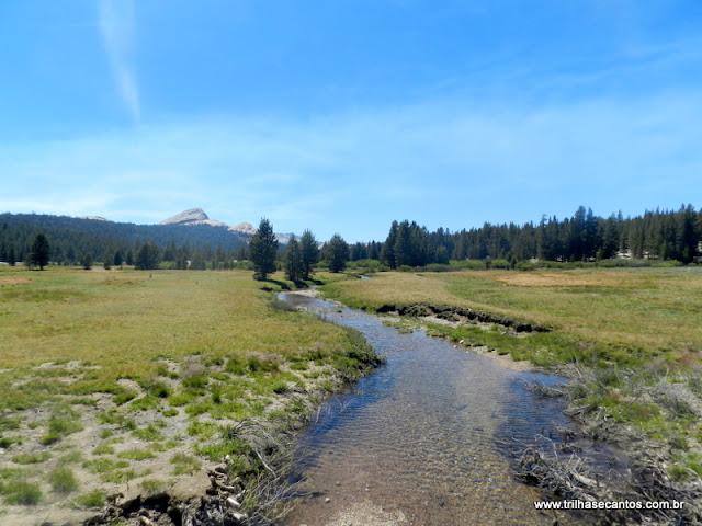 Yosemite Tuolomne Meadows