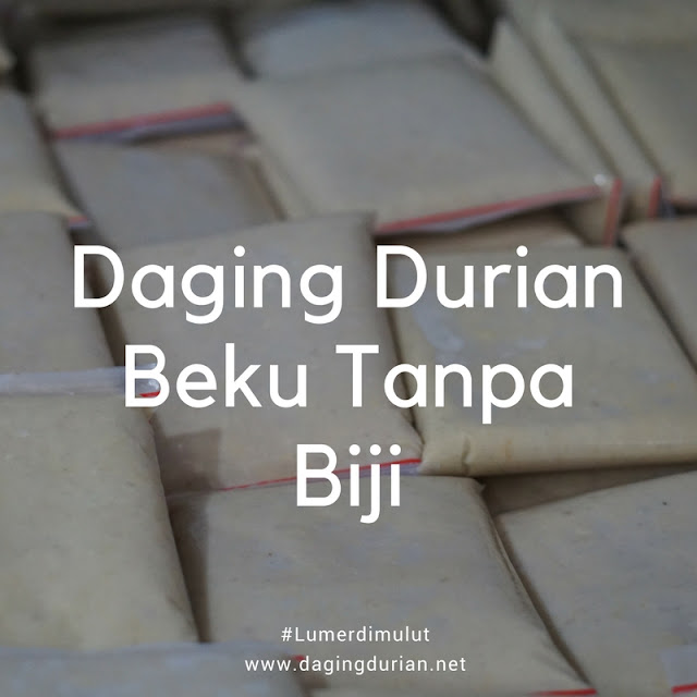 produsen-daging-durian-medan-frozen-di-karang-tinggi