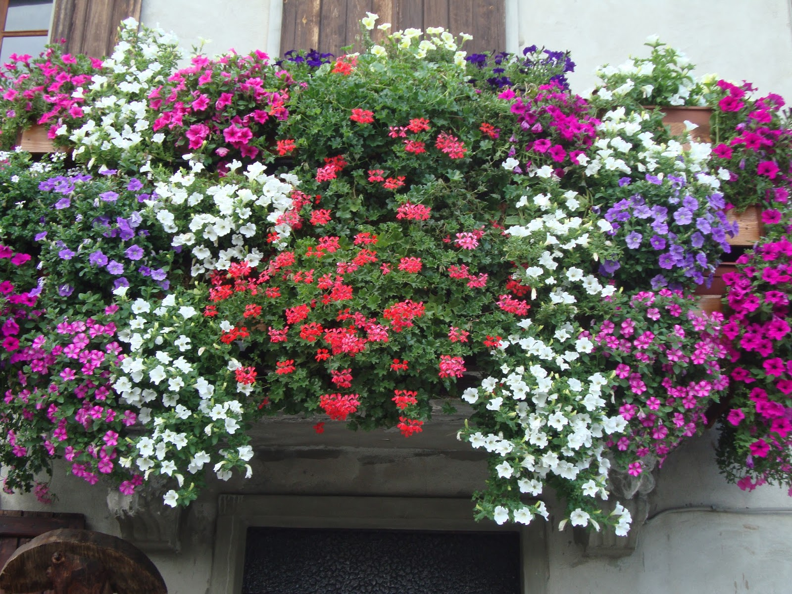 Un piccolo giardino in citt balconi fioriti - Giardini curati ...