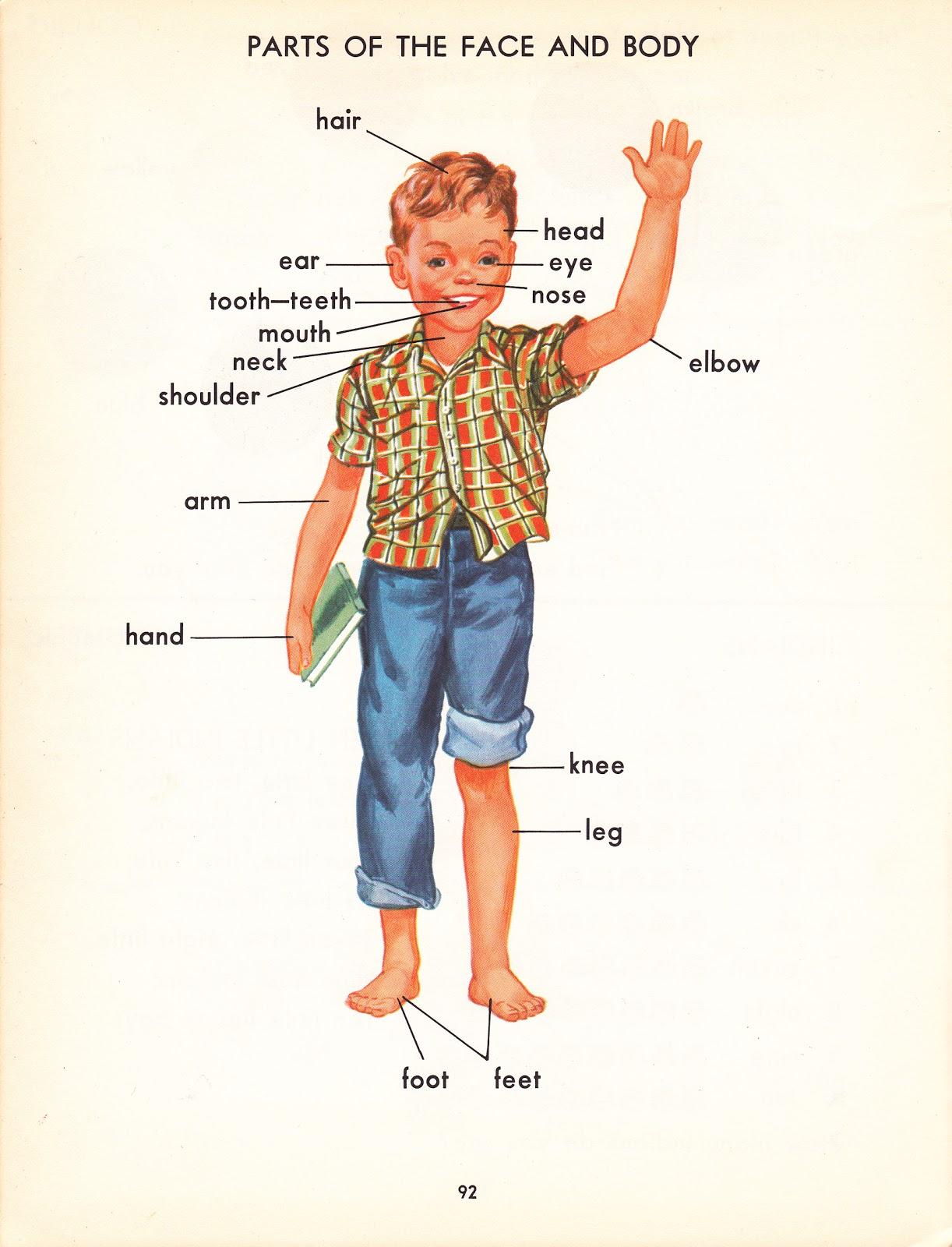 Pop Circus Retro Book Fair Young Reader S Color Picture
