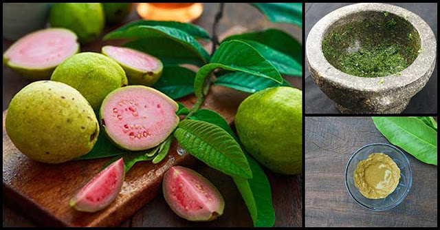 How Guava Benefits Our Skin