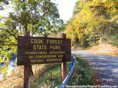Cook Forest State Park is located in western Pennsylvania