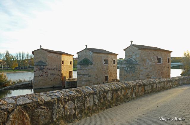 Aceñas de Olivares, Río Duero, Zamora