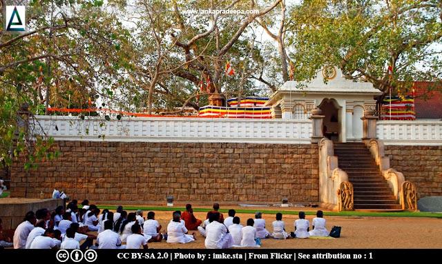 Sri Maha Bodhi, Anuradhapura