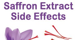 Buy Satiereal Saffron Extract Side Effects Of Saffron Extract