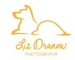 Liz Dranow Photography