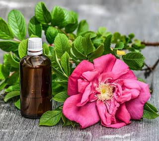 Air Mawar Efektif Untuk Mengatasi Jerawat Dilengkapi Gambar Bunga