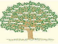 Algumas lições da genealogia de Cristo