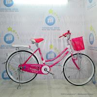 City Bike Evergreen R1 Butterfly 24 Inci