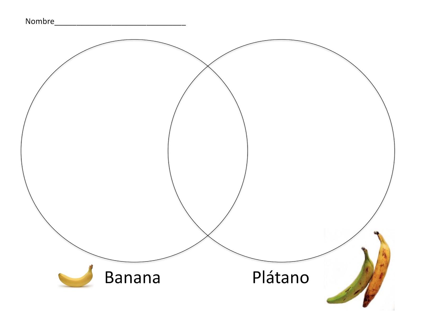 Guineo O Platano Comparing Plantains And Bananas