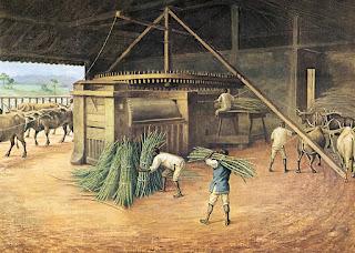 Auge da Exploração do Açúcar no Brasil (1530-1650)