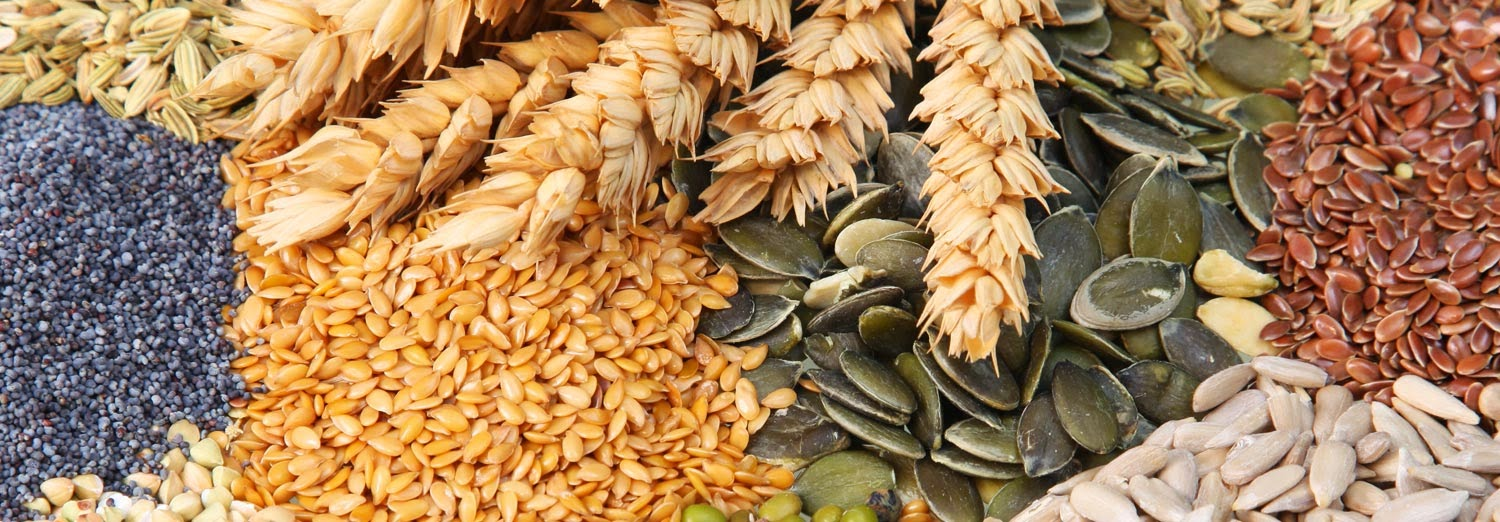 Agri Commodity Tips,NCDEX chana, Future Trading Tips, Delivery calls