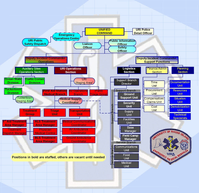 Download free ICS Organization Chart