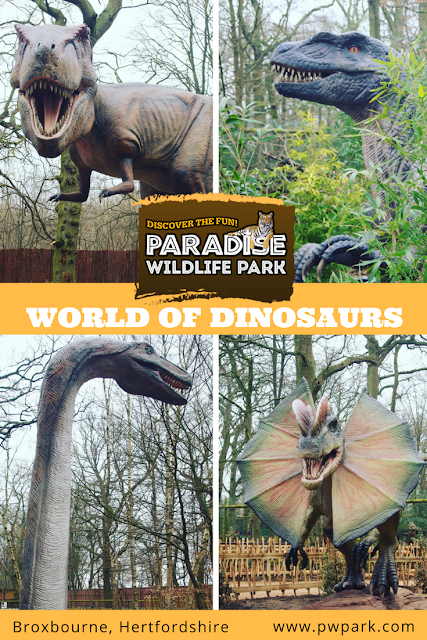 Paradise Wildlife Park World Of Dinosaurs