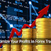Understanding Forex Trading, Making money, Risks and profits