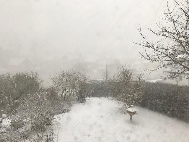 Schneesturm im Januar