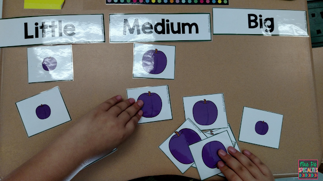 photo of student sorting plum pictures by size