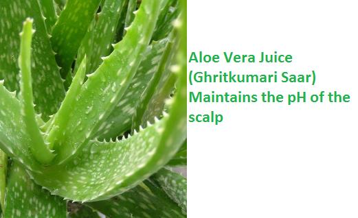 Aloe Vera Juice (Ghritkumari Saar) Maintains the pH of the scalp