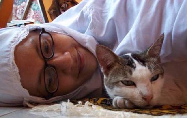 Jika Pakaian Sholat Kita Terkena Bulu Kucing. Apakah Sholat Kita Sah?