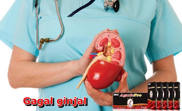 Obat Gagal Ginjal Tradisional Tanpa Operasi