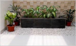 contoh taman kering dalam rumah minimalis
