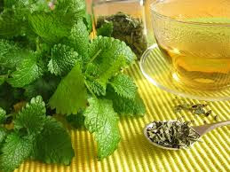 best lemon balm tea for stress