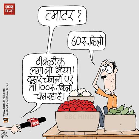 tomato price, mahangai cartoon, news channel cartoon, Media cartoon