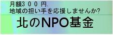 http://npoproject.hokkaido.jp/