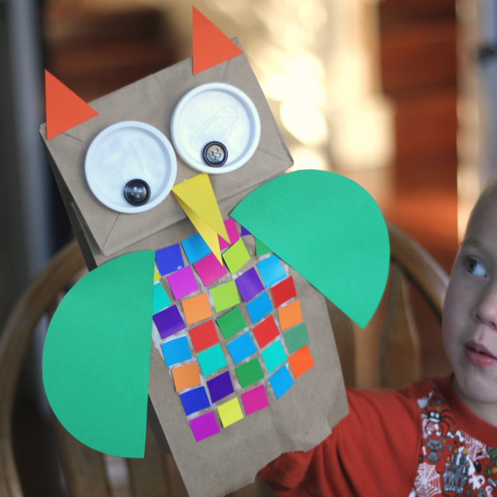 As You Are Playing With Your Owl Could Talk About The Colors On Feathers And Shapes Of Different Parts Especially Wings