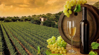 wines-from-sula-vineyards-enter-russian-market