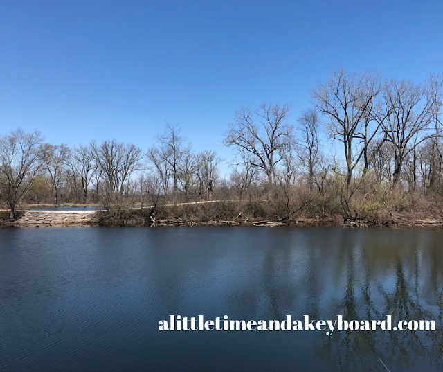 Beautiful blue skies and lake at Pratt's Wayne Woods