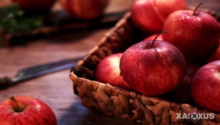 Buah penambah darah untuk penderita darah rendah - Apel