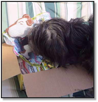 Lotte packt ein Paket aus