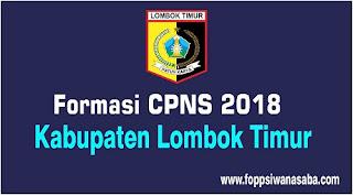 Formasi CPNS 2018 Kabupaten Lombok Timur