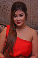 Payal Ghosh Looks Stunning in Red Half Shoulder Gown 047.JPG