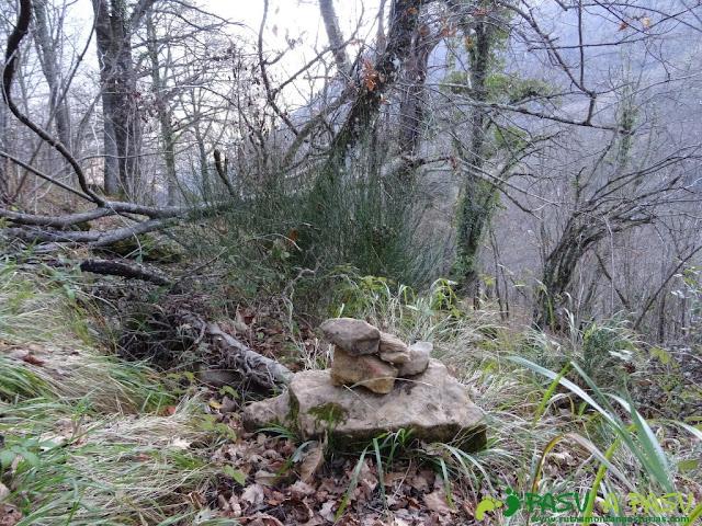 Jito bajando por el bosque a Fabar