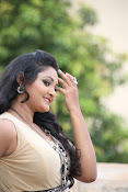 Vasavi Reddy glamorous photo shoot gallery-thumbnail-14