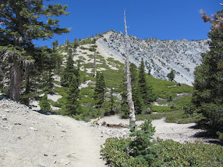Looking north on Baldy's South ridge