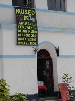 Museo de Animales Fenómenos