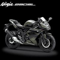 Kredit Motor Murah Kawasaki Ninja RR 250 Mono