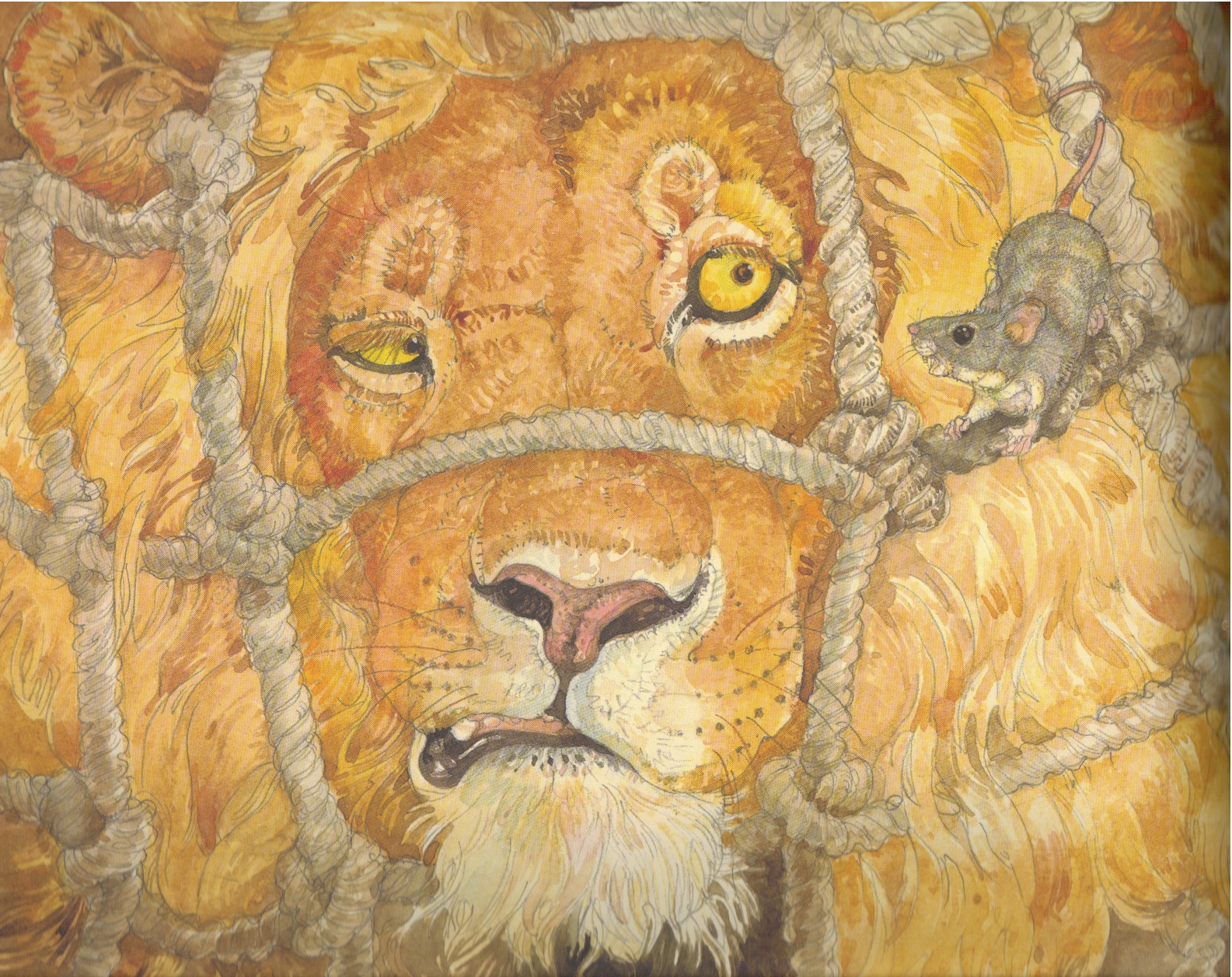 Beyond The Book Storytimes The Lion And The Mouse With