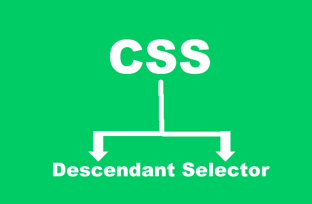 CSS Descendant Selector and How To Use It