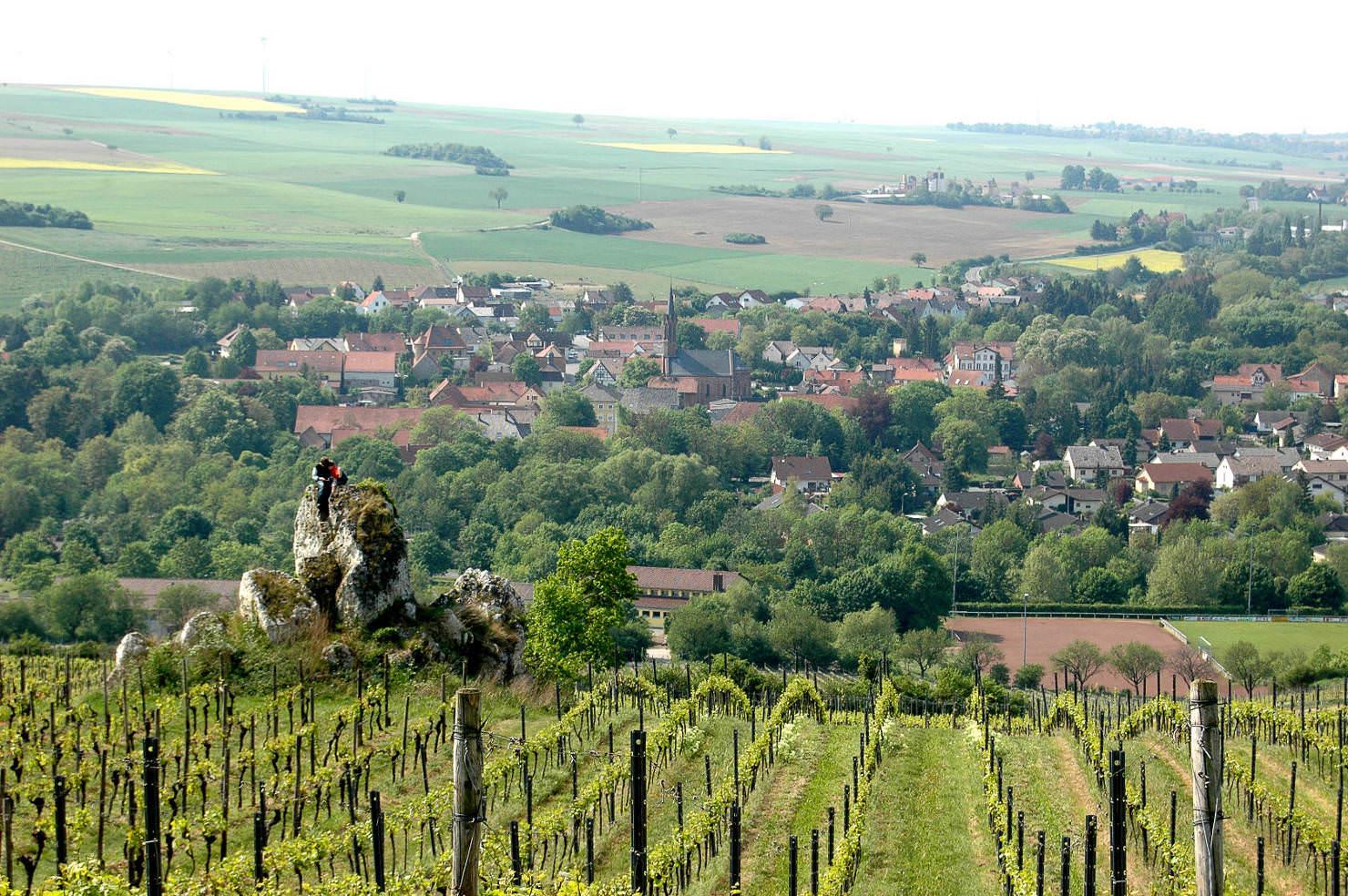 Blick vom Weindorf Zell ins Zellertal